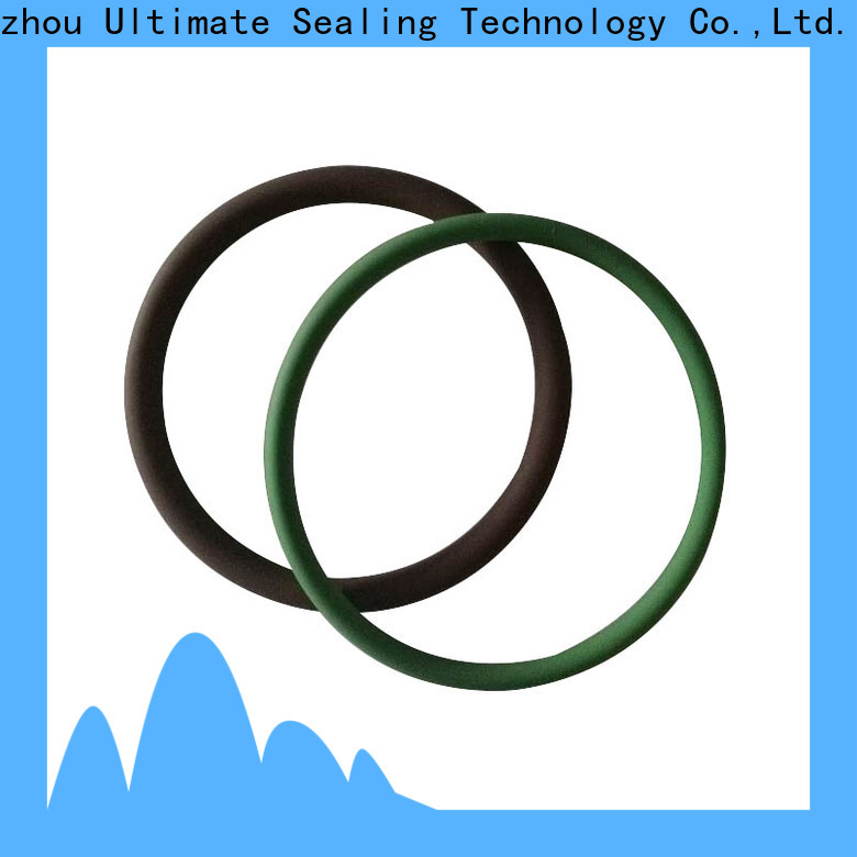 Ultimate practical food grade o ring personalized for sanitary equipment
